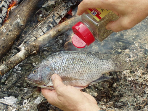 Survivaltek how to bake fish in clay for How to season fish for baking