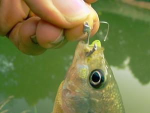 Pull Tab Fishhook