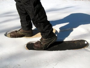 Skateboard Snow Shoes