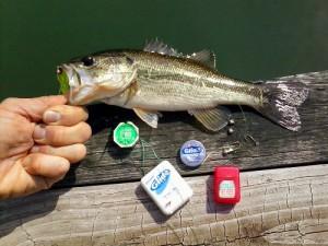 Floss Fishing EDC