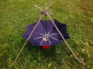 Umbrella Water Collector