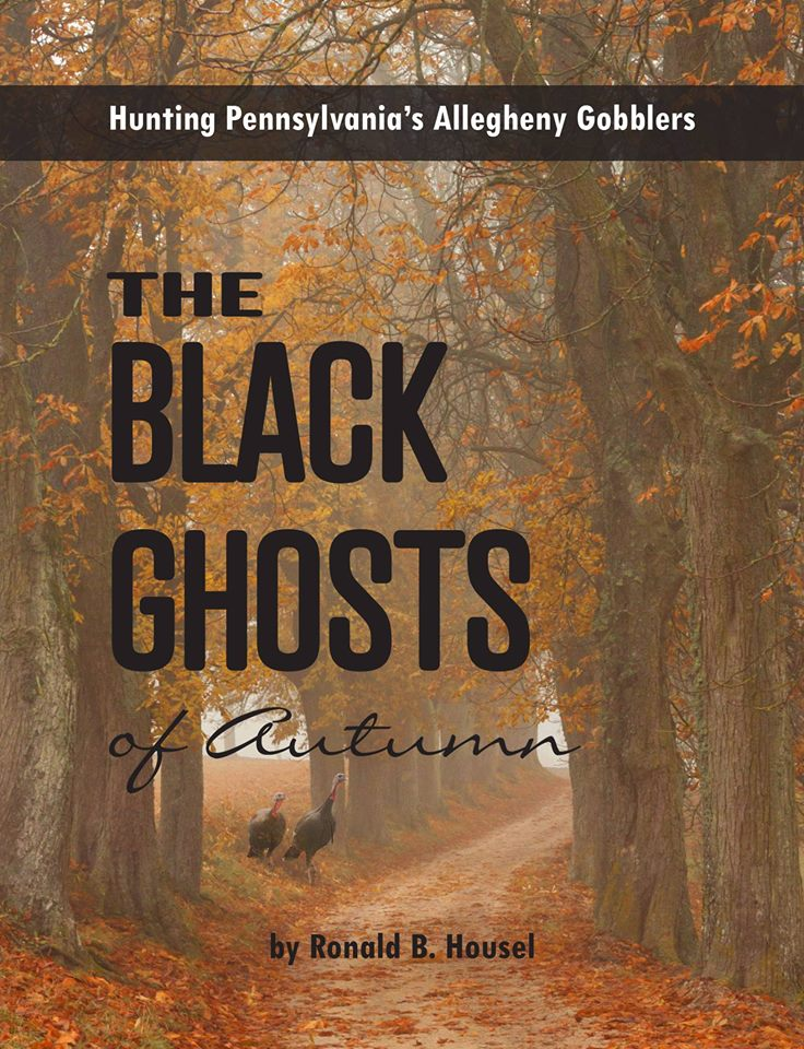 The Black Ghosts Of Autumn Cover